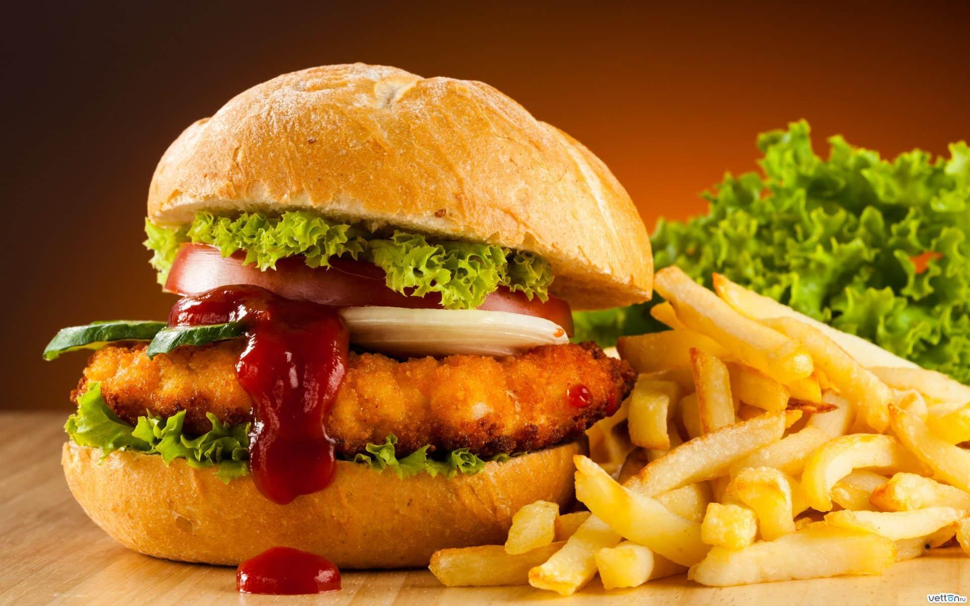 863385284hamburger-fast-food-french-fries-Favim.com-483020