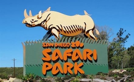san-diego-safari