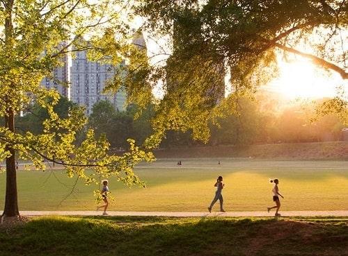 Piedmont Park - Atlanta