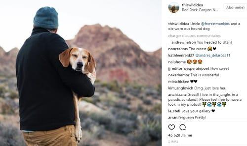 Road-trip avec son chien