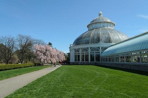 Jardin botanique de New-York - Le Bronx