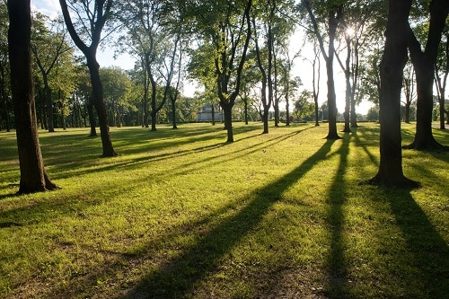 Pelham Bay Park - Le Bronx